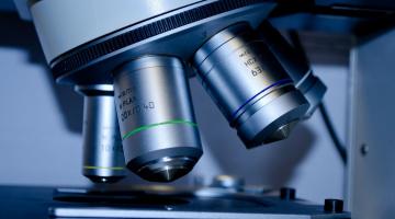 Génie Enzymatique et Cellulaire